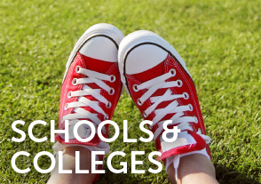 Schools and Colleges